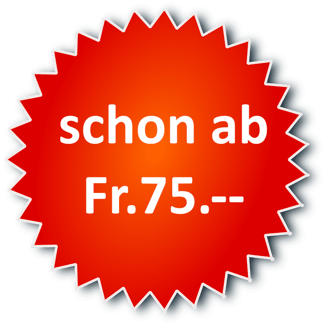 Fahrstunden ab Fr. 75.-- in Solothurn